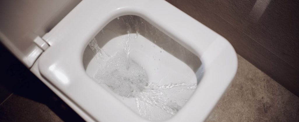 Is Your Toilet in Need of Repair?